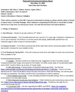 Icon of 8. Environmental Advisory Board - December 2020 Minutes