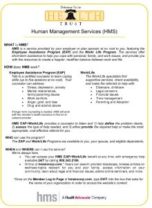 Icon of Human Management Services (HMS) Flyer